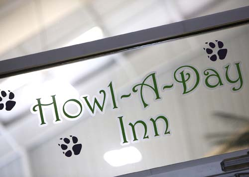 howl a day inn